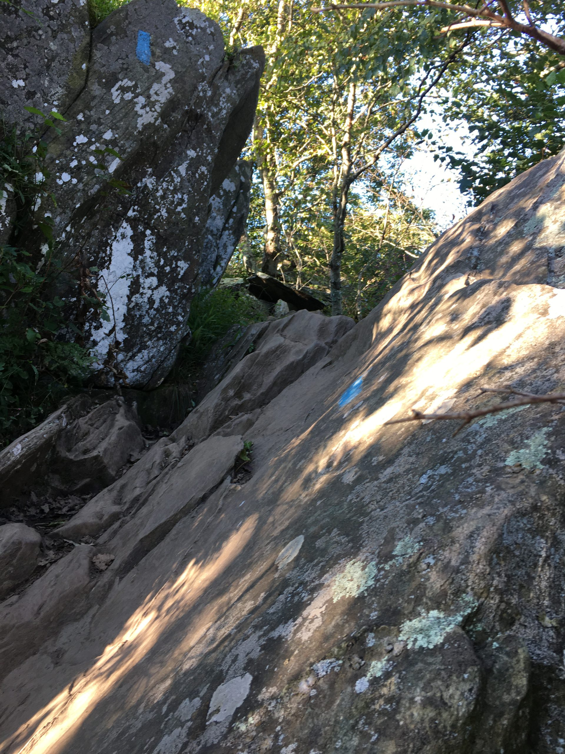 bearfence rock scramble